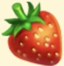 Strawberry Family Farm Seaside