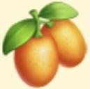 Kumquat Family Farm Seaside